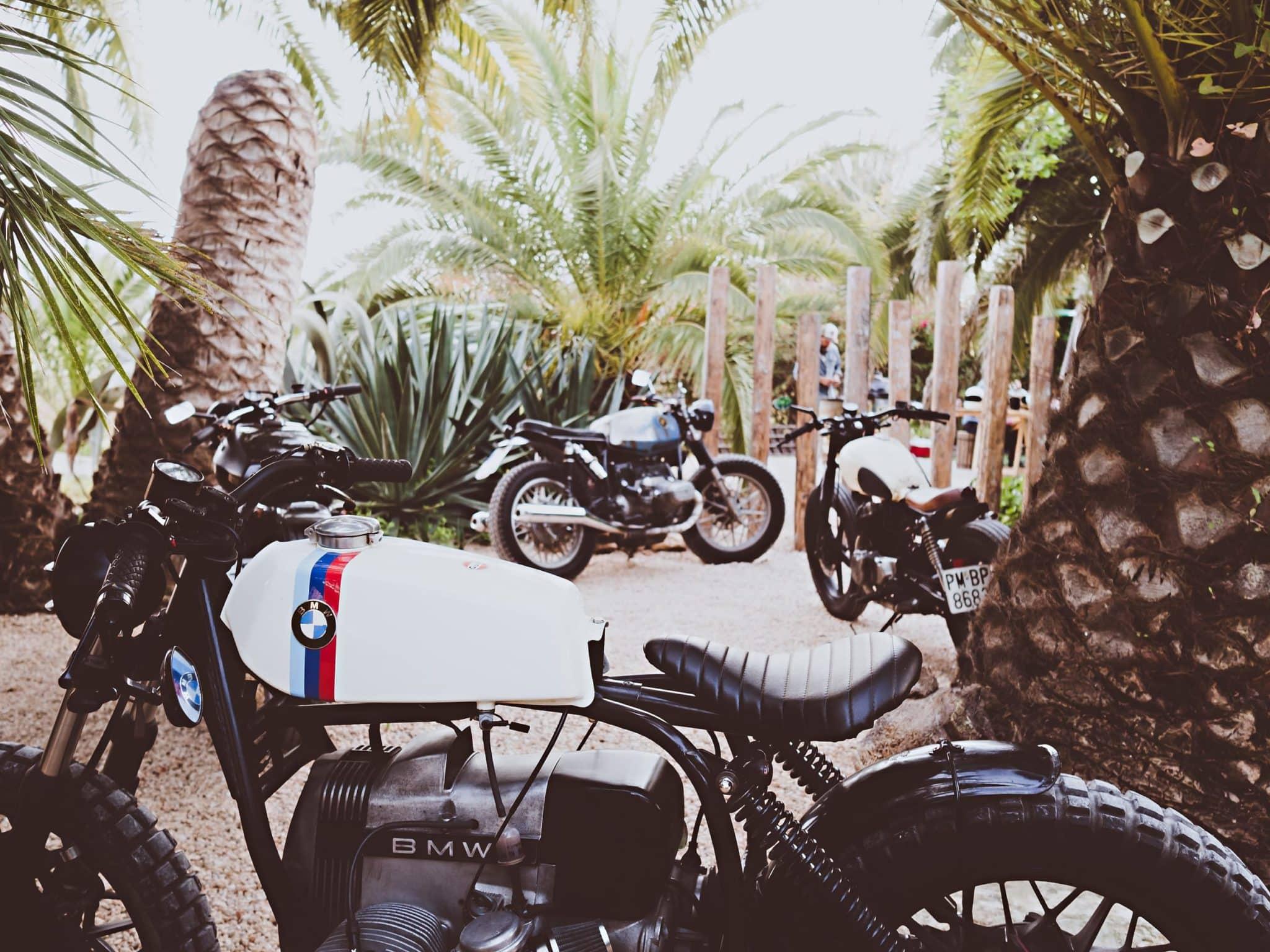 Charruas Ibiza