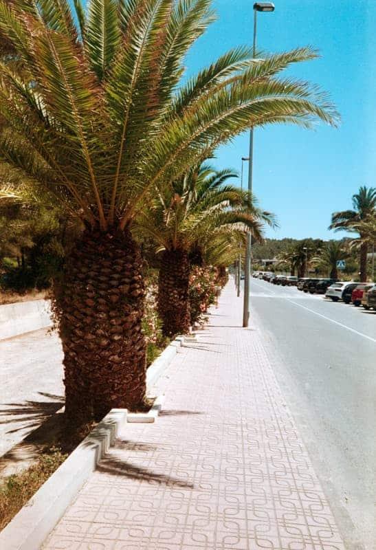 AnalogLiebe-Ibiza-HolgerAltgeld-028