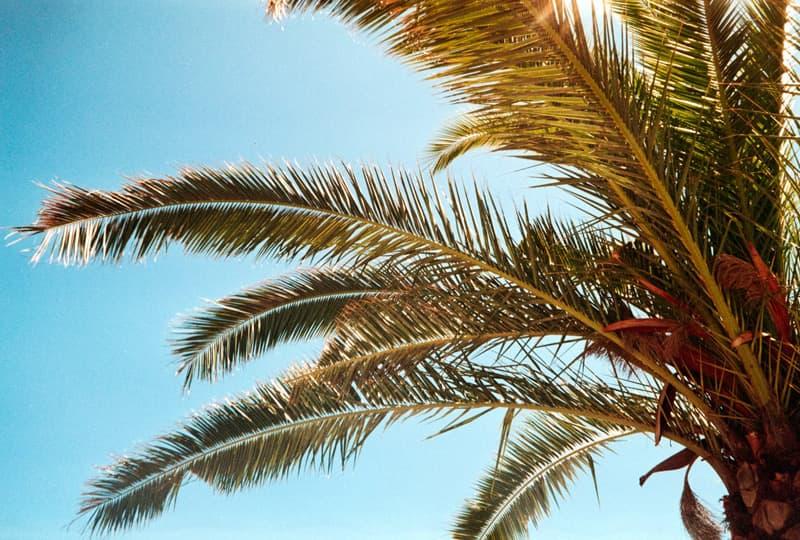 AnalogLiebe-Ibiza-HolgerAltgeld-030