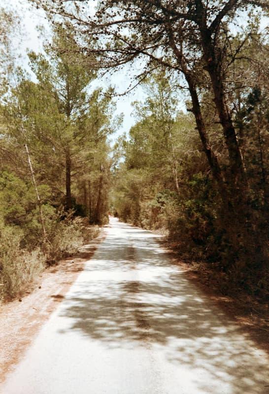 AnalogLiebe-Ibiza-HolgerAltgeld-043