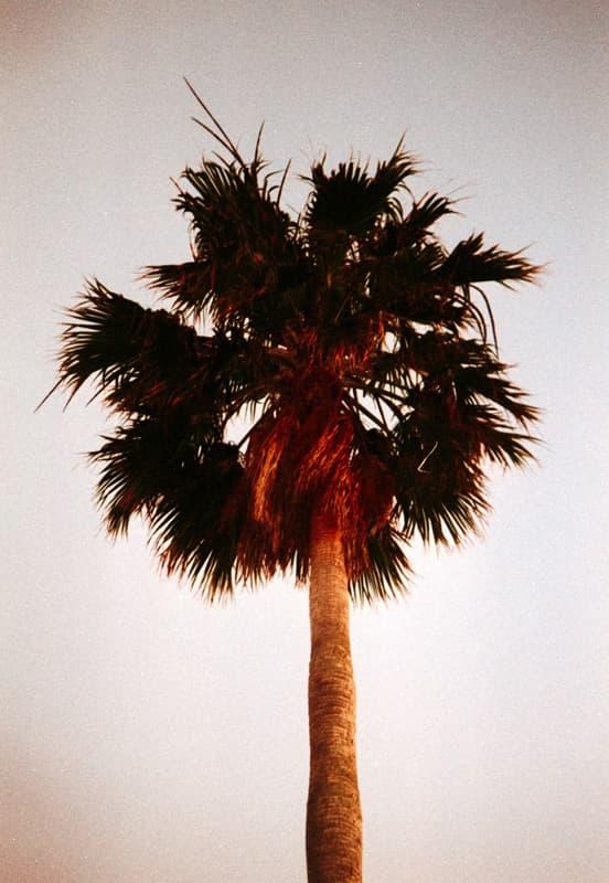AnalogLiebe-Ibiza-HolgerAltgeld-044